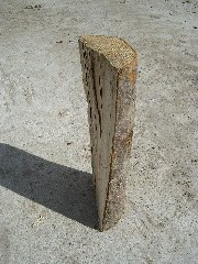 maple firewood