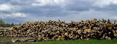 firewoodstorage