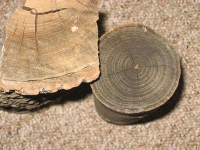 Two Tone firewood
